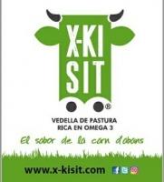 LÍNIES DE TREBALL D'X-KISIT EN SEGURETAT ALIMENTÀRIA
