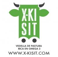 CLASIFICACIÓN DE CANALES X-KISIT